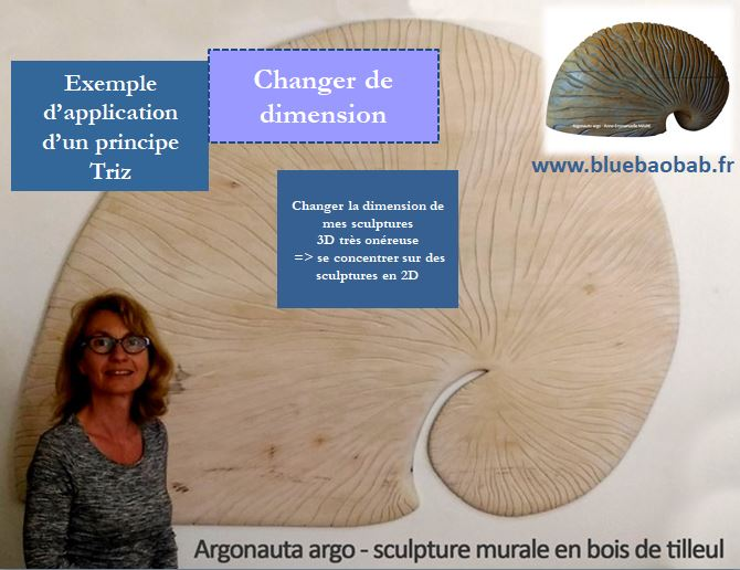 Triz-innover-changement-dimension-exemple-sculptures-bluebaobab