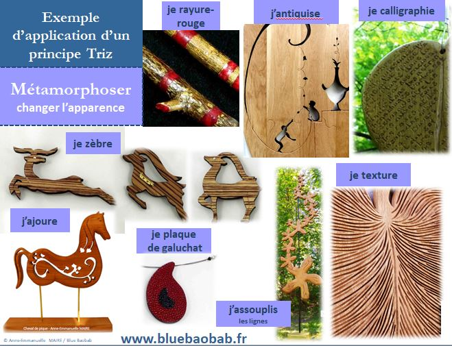 Triz-innover-changer-apparence-exemple-bijoux-bluebaobab