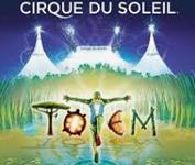 cirque du soleil stratégie océan bleu
